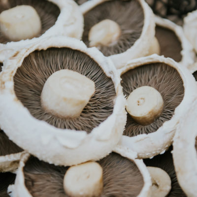 flat wild mushrooms