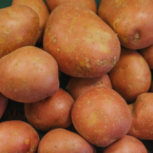 best red potato