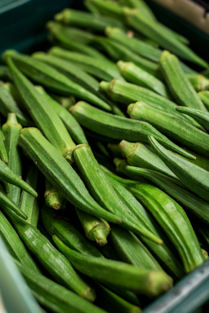 okra (ladies fingers)